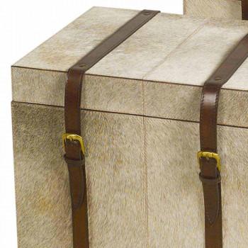 2 de proiectare în ponei gri trunchiuri Ritini, mari și mici