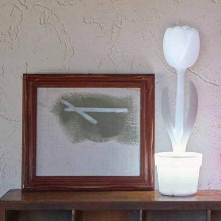 Compoziție 4 Lămpi de masă cu design modern - Lalea de Myyour
